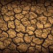 Dried Terrain — Stock Photo