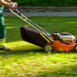 Mowing machine — Stockfoto
