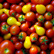 Tomatoes Background - Stock Photo