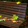 Leafs in Bench - Stock Photo