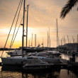 Постер, плакат: Yachts at sunset