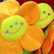 Smiling Flowers — Stock Photo