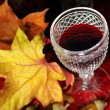 Fall Red Wine - Stock Photo