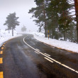 Snowy road — Stockfoto