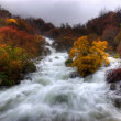 Rapid Waters - Stock Photo