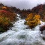 Rapid Waters — Stock Photo