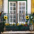 Sunflower balcony — Stock Photo