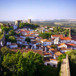 Royalty-Free Stock Photo: Obidos village