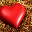 Stock Photo: Fragile Heart