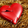 Stock Photo: Broken Heart