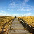 Stock Photo: Dune Walkway