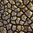 Stock Photo: Cracked Dirt