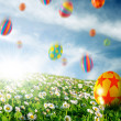 Eggs in Flower Field — Stockfoto