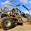 4wd Buggy - Stock Photo