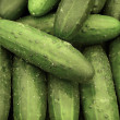Cucumbers — Stock Photo #5875056