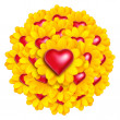 Heart Flowers — Stock Photo
