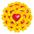 Stock Photo: Heart Flowers