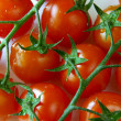 Cherry Tomatoes — Stock Photo #5875137