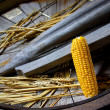 Royalty-Free Stock Photo: Corn Cob