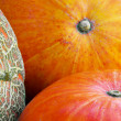 Three pumpkins - Stock Photo