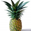 Pineapple — Stockfoto #5875306