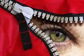 Photo of a green eye peeking through an opened zipper. — Stock Photo