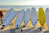 Seven Surfboards — Stock Photo