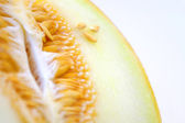 Cantaloupe Seeds — Stock Photo