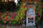 Listy na plot — Stock fotografie