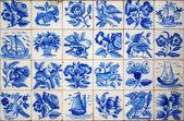 葡萄牙瓷砖 — 图库照片