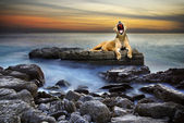 Surreal lioness — Stock Photo
