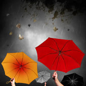 Bad Weather — Stock Photo