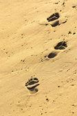Sand drucke — Stockfoto