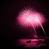 Magenta Fireworks — Stock Photo
