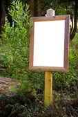 Blank board — Stock Photo