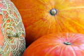 Three pumpkins — Stock Photo