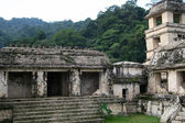Palenque — Stock Photo