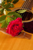 Red Rose Natural Acoustic Guitar — Stock Photo