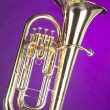 Tuba Euphonium Isolated on Purple — Stock Photo