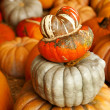 Stock Photo: Many Pumpkins Stacked