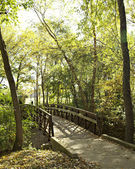Rustic Foot Bridge in Autumn — Stock Photo