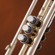 Stock Photo: Trumpet Cornet Isolated on Gold