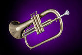 Flugalhorn Trumpet Isolated On Purple — Stock Photo