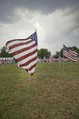 Bandeiras dos estados unidos — Fotografia Stock