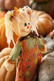 Rag Doll Thanksgiving Halloween Autumn — Stock Photo