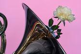 Französisch Horn mit gelben stieg auf Rosa — Stockfoto