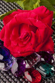 Red Rose and Gem Stones — Stock Photo
