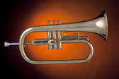 Flugelhorn trumpet gold Isolated — Stock Photo