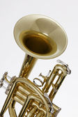 Cornet Trumpet Isolated on White — Stock Photo