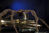 Halloween Euphonium Tuba Snake Spider — Stock Photo